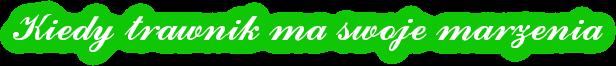 Trawnik Marzeń Logo